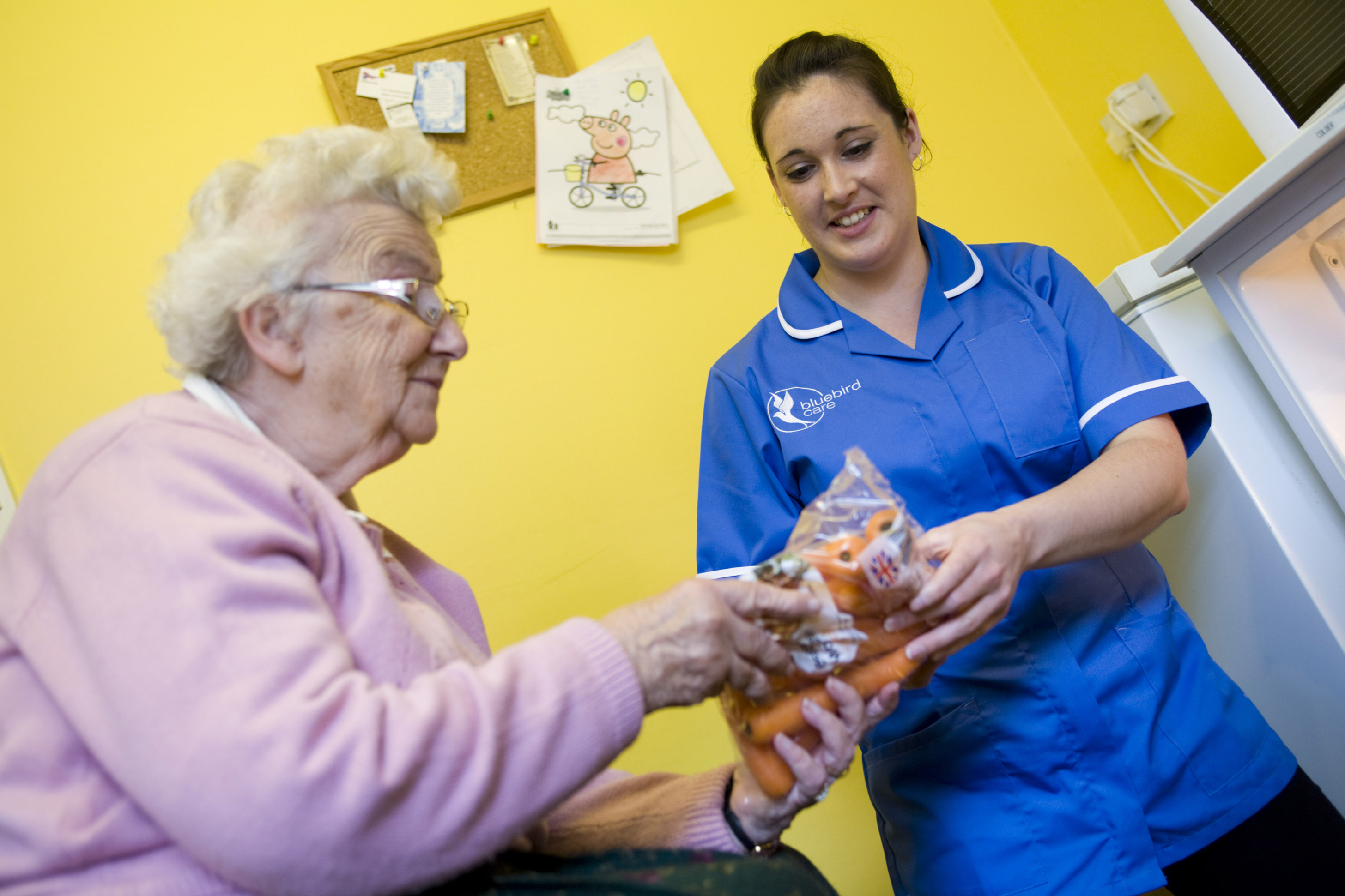 Home care, carer helping put shopping away
